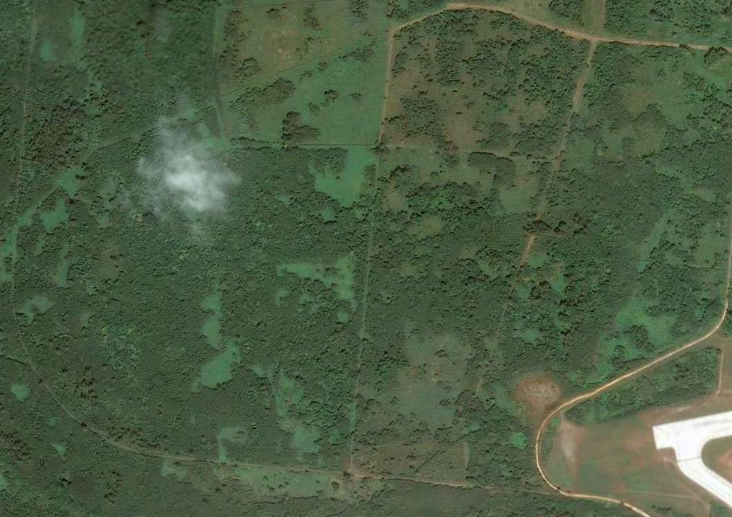 A 2003 aerial view showed no trace of Tinian West Field #4, with the site  overgrown with trees.